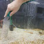 金魚屋の熱帯魚水槽メンテナンス・掃除テクニック教えちゃいます。